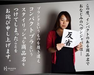 audb3000kaimei_02
